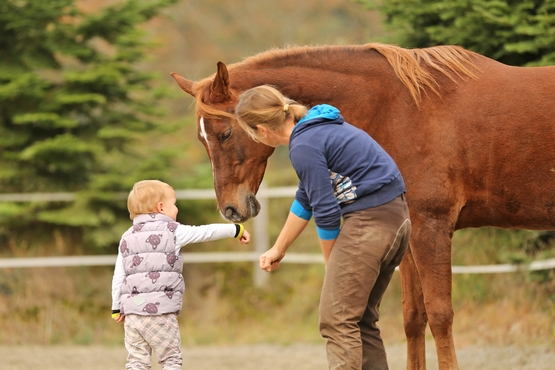 Aliana Mueller - Equine-Assisted Therapy